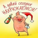 Весы для взвешивания свиней своими руками фото 11